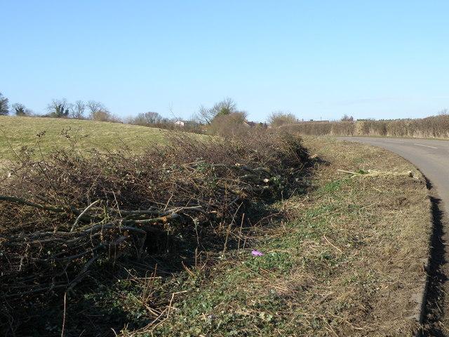 Hedge Laying near Slipton