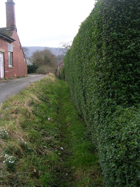 Footpath - Weston Lane