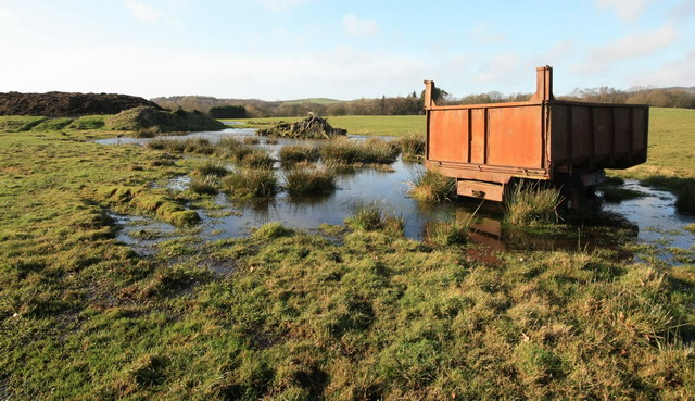 Boggy Land at Holling Shears