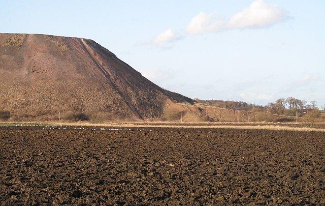 Arable land, Niddry