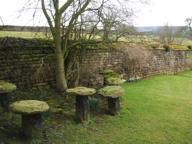 Staddle stones and snowdrops