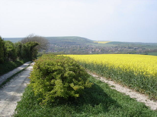 Track and rape field above Lullington Court - view towards Alfriston