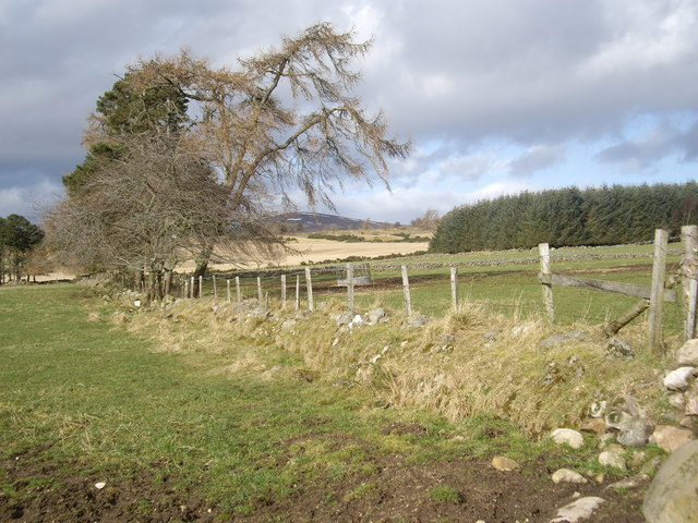 View NW from end of track from Claydykes