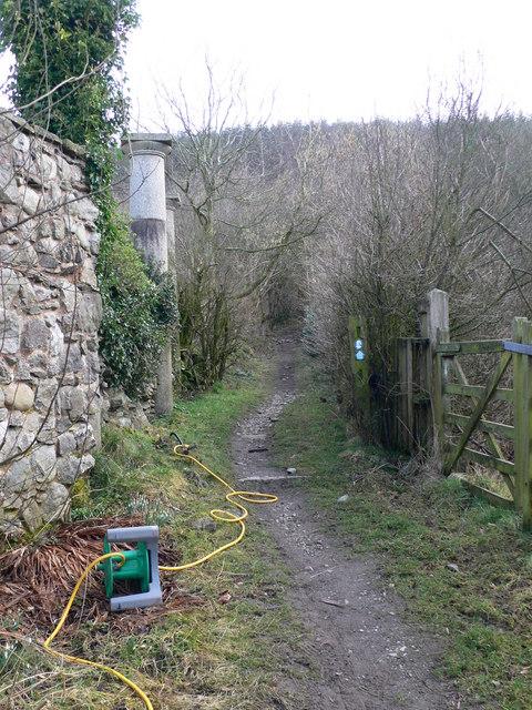 Offa's Dyke Path at Hafod Bilston