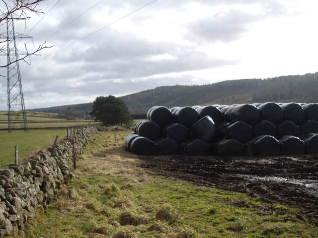 Bales below Power Lines