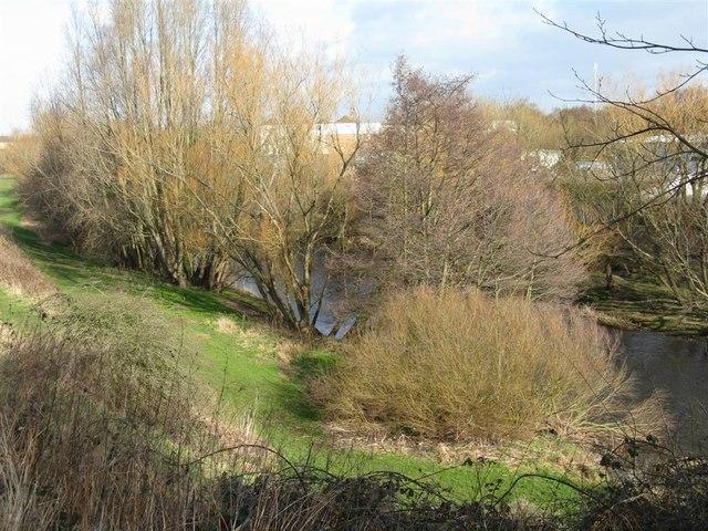 The River Esk at Haugh Park