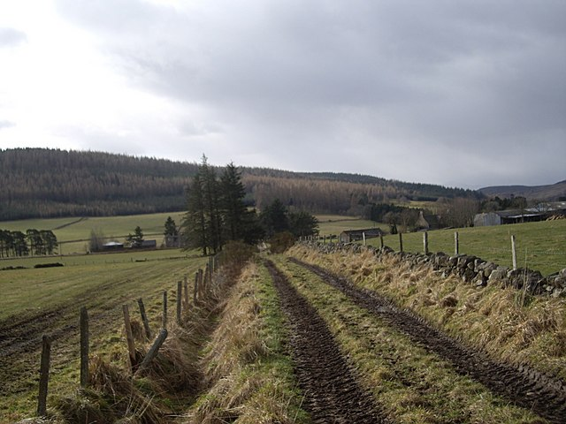 Track to Claydykes