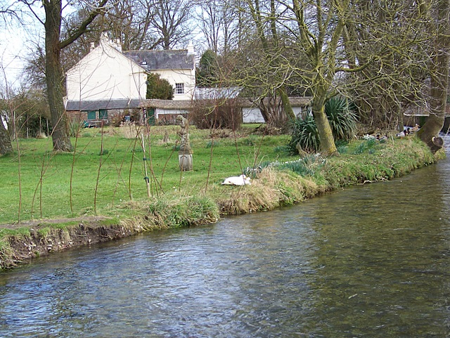 The River Piddle, Puddletown