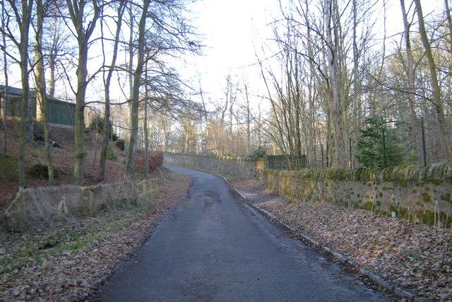 East Cotton of  Gardyne / Mains of Gardyne Road, near Crow Hill