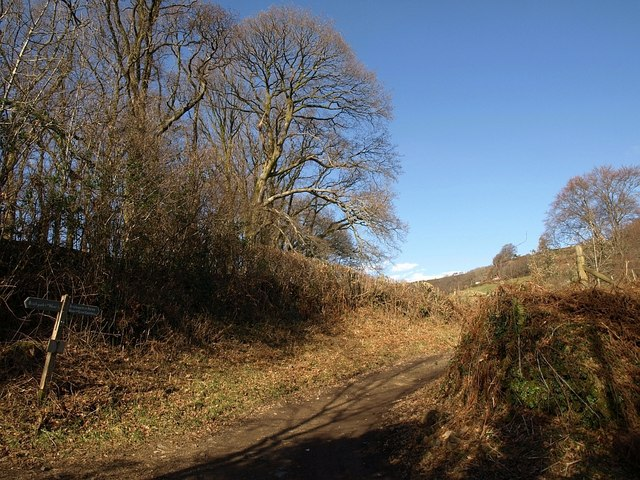 Bridleway to Great Combe