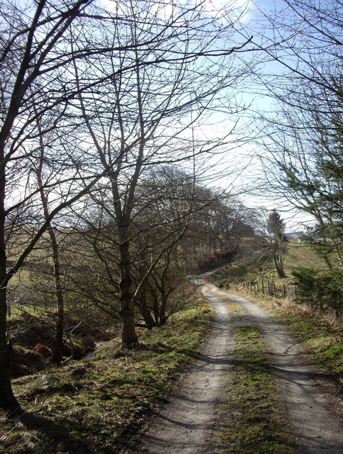 Lane from Broomfold to Backmoss