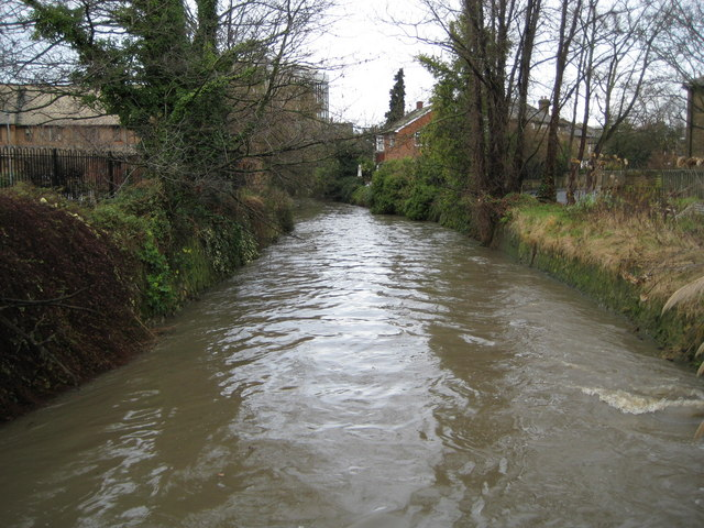 Hogsmill River in Kingston upon Thames