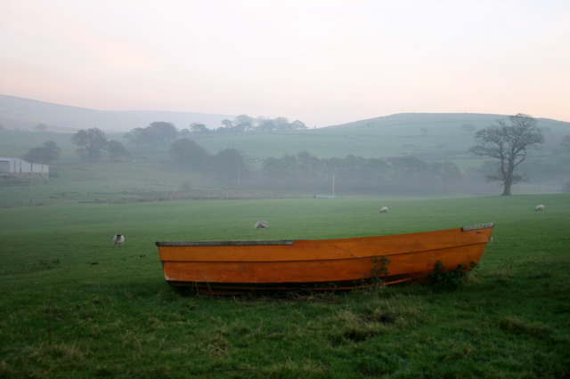 Boat on Grazing Land