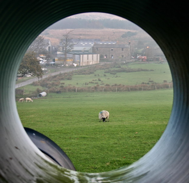 Farm Pipe Dream