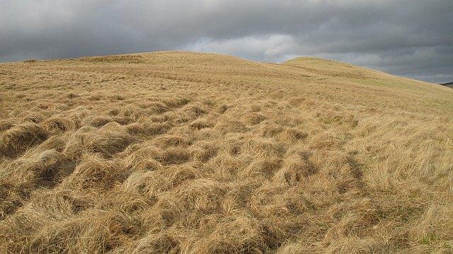 Macrule Hill