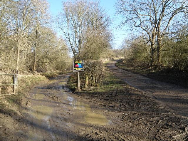 Muddy Track, Muddy Road
