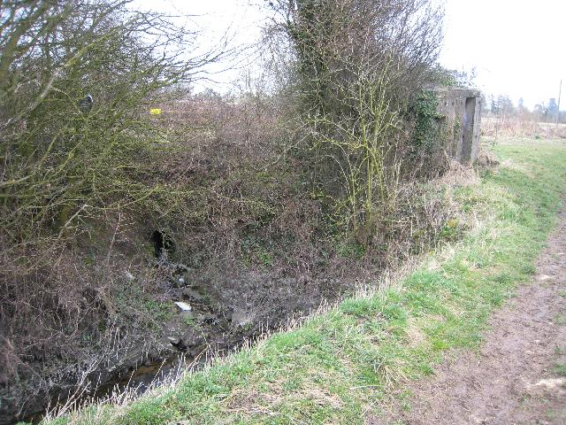 Culvert and Pill Box