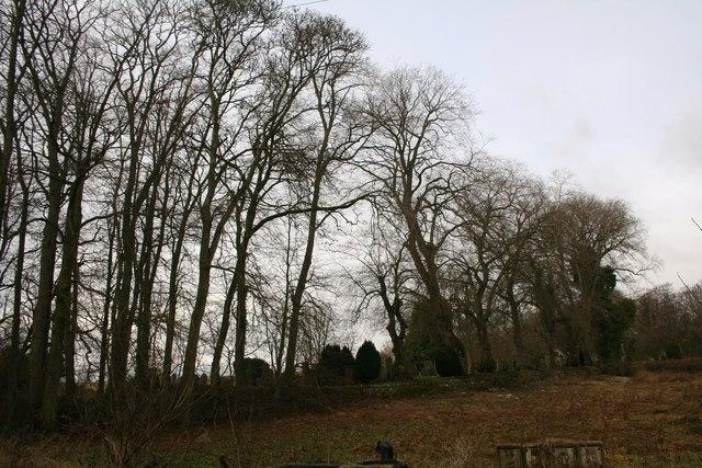 Fintray Graveyard.