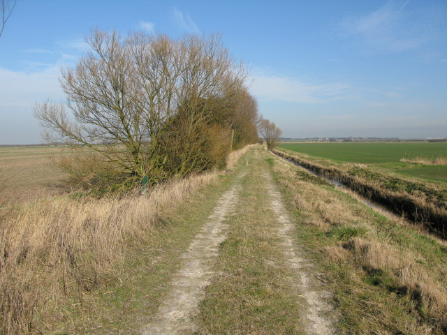 View along Gilling Drove across Chislet Marshes