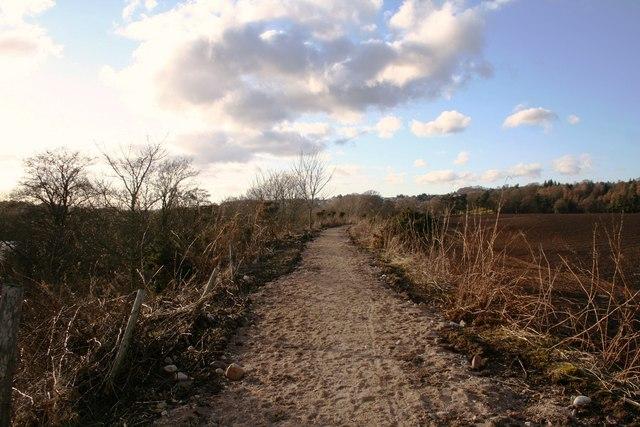 Deeside Pathway