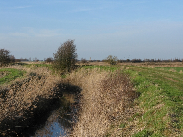 Looking NNw across Chislet Marshes