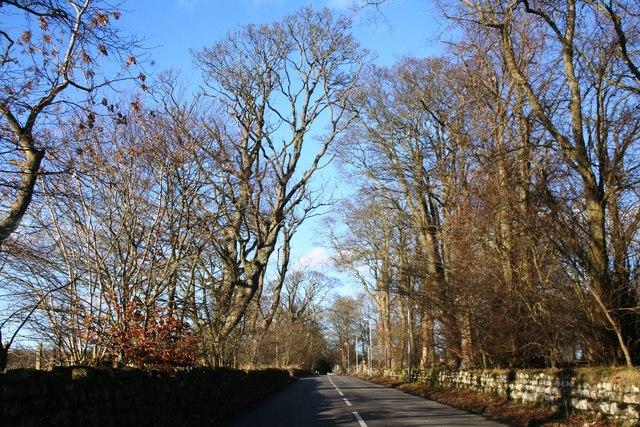 Road to Skene