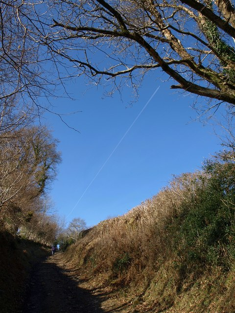 Bridleway to the moor