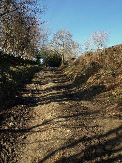Bridleway to the moor
