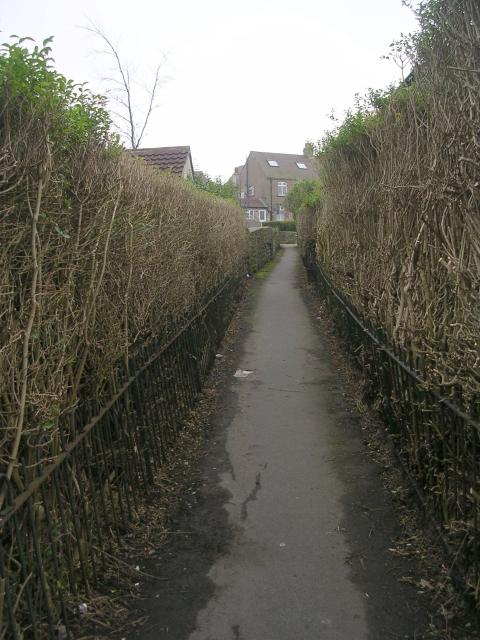 Footpath - The Grove