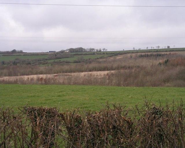 Across Fenton Brook