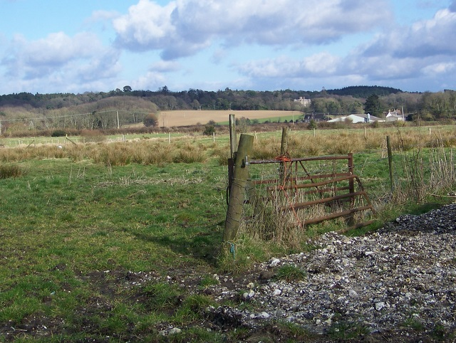Footpath, Tincleton
