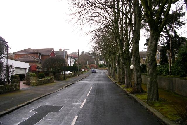 Westcliffe Avenue - West Lane