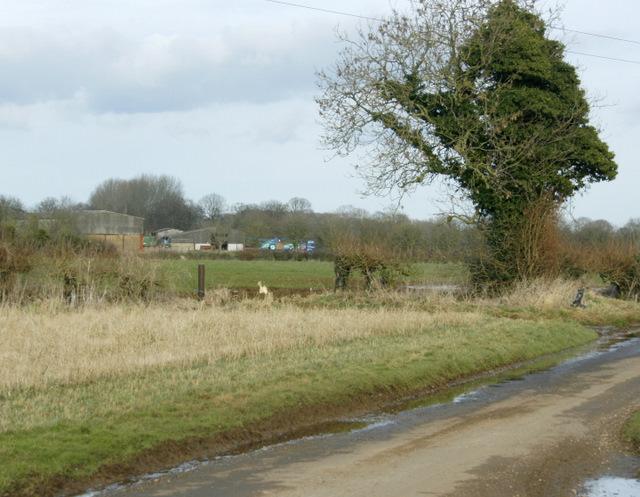 2009 : From Chippenham Lane