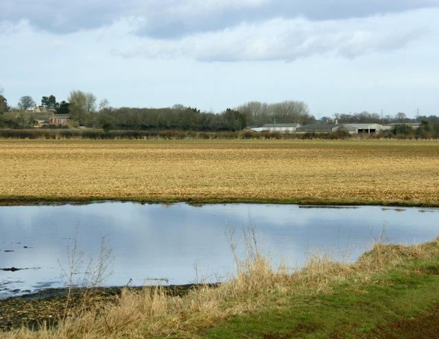 2009 : Pond by Chippenham Lane