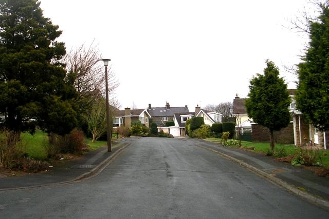 Summerfield Drive - Summerfield Park