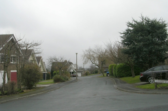 Summerfield Grove - Summerfield Park
