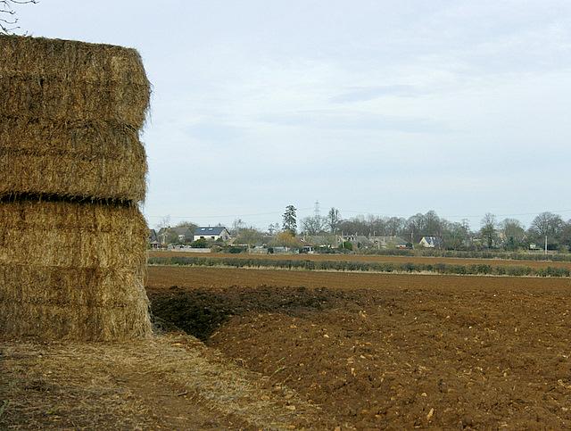 2009 : Ploughed field off Weavern Lane