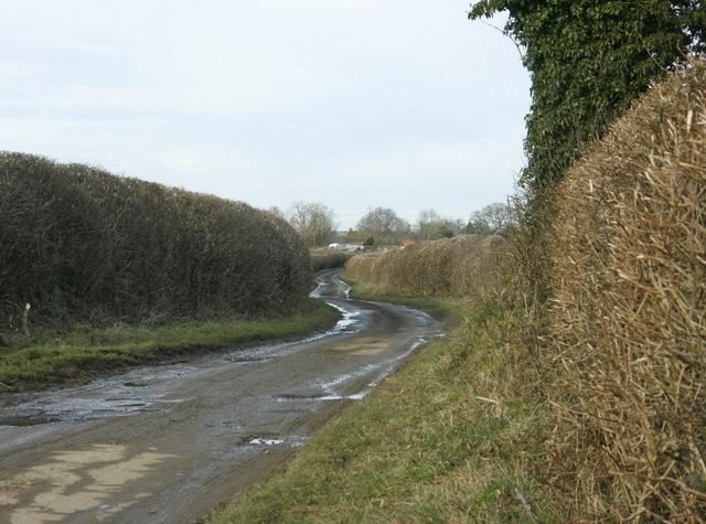 2009 : North on Weavern Lane