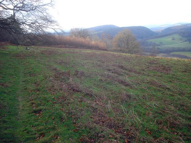 Path along Yatton Hill