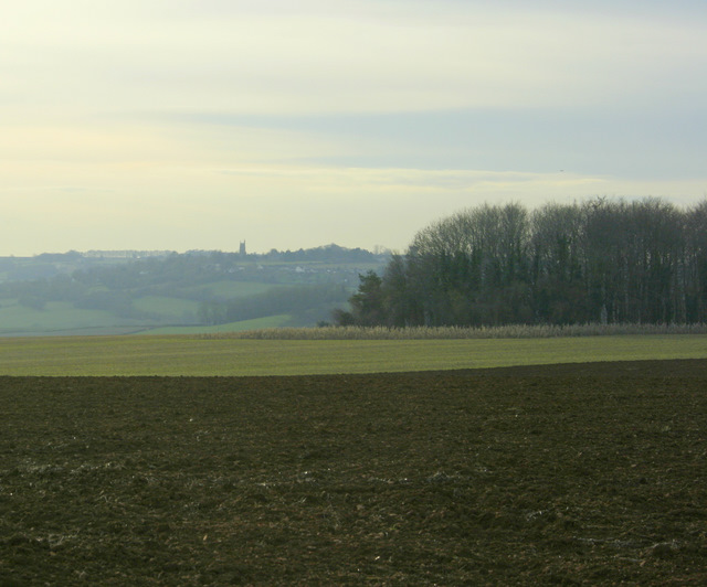 2009 : South west from Weavern Lane