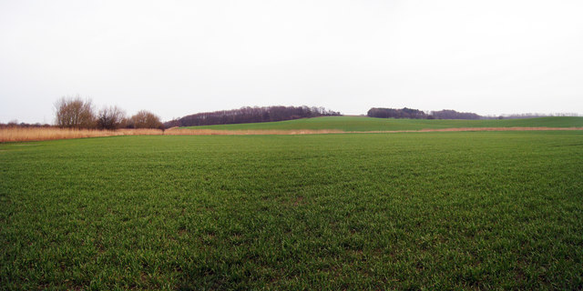 Fields next to Kent & East Sussex Railway