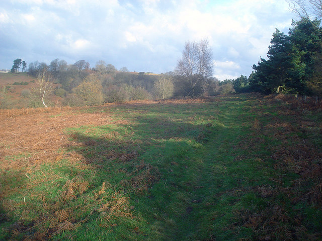 Path along Yatton Hill