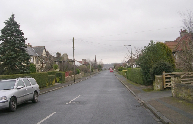 Greencliffe Avenue - West Lane