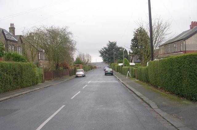Salisbury Avenue - West Lane