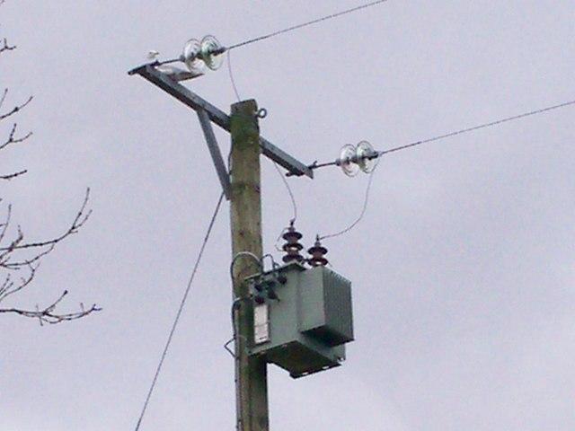 Electric Pole, Middleton garden, Llanteg