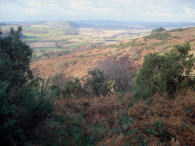 Hillside west of Croft Ambrey