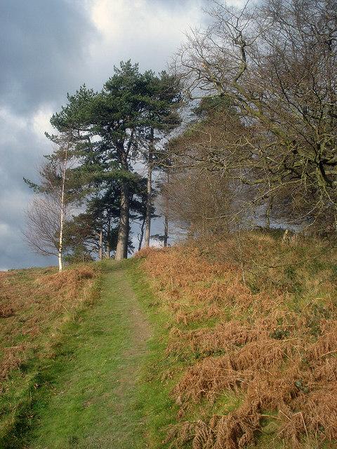 Path to the Croft Ambrey ridge