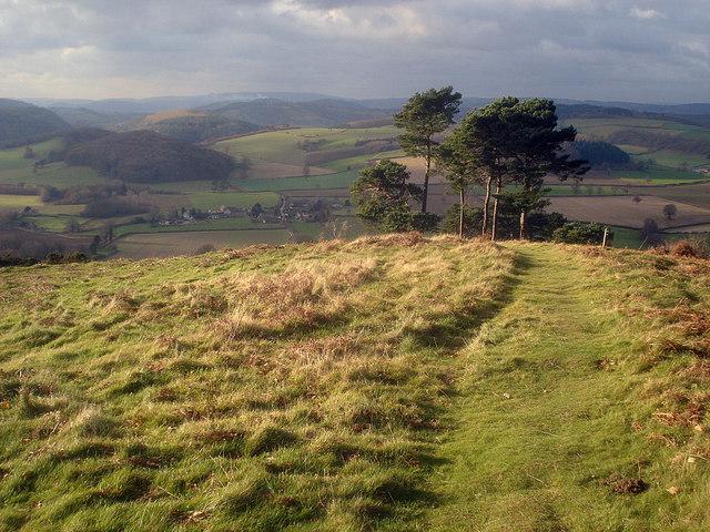 Hillside west of Croft Ambrey - 2
