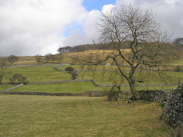 Walls near Langcliffe