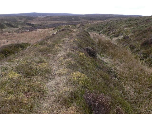 Track near Aber Sychnant on Esclusham Mountain
